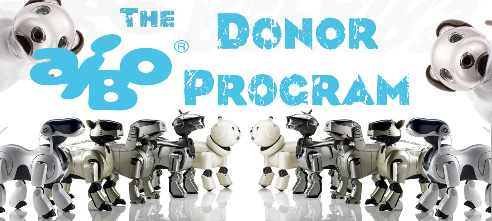 aibo-donor-program-main-banner